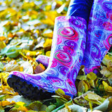 Pink gumboots Stock Photos