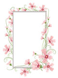 Pink gypsophila flowers border frame template Royalty Free Stock Photos