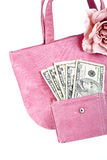Pink handbag with money Royalty Free Stock Photo