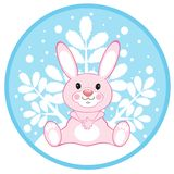 Pink hare Royalty Free Stock Photography