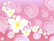 Pink Hawaiian fancy background Stock Photography