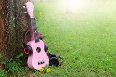 Pink headphones ukulele music and black camera on green grass. Royalty Free Stock Photography