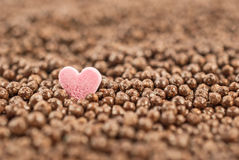 Pink heart on chocolate balls background, shallow depth of field. Stock Image