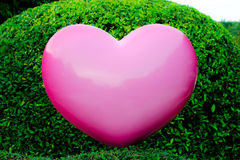 Pink heart in garden Stock Images