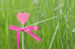 Pink heart with grass background Royalty Free Stock Photos