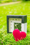 Pink heart on the green grass. Stock Photo