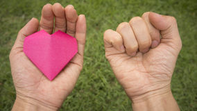Pink heart in hand Stock Photo
