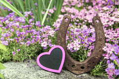 Pink heart and horseshoe in front of a spring meadow Stock Image