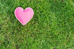 Pink heart love on grass Royalty Free Stock Image