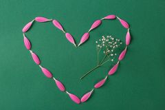 Pink heart made from gerbera pestals on green background with white flower stock image