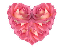 Pink Heart made of Roses Royalty Free Stock Image