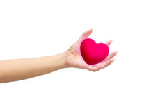Pink heart in man hands,  on white background. Royalty Free Stock Photos