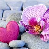 Pink heart and orchid Stock Image