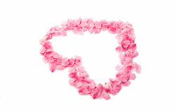 pink heart from the petals isolated Stock Image