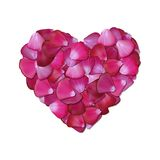 Pink heart of petals on white background Stock Images