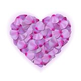 Pink heart of petals on white background Royalty Free Stock Photography