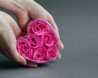 Pink heart. Stock Photos