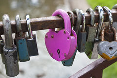 Pink heart-shaped lock Stock Images