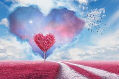 Free Pink Heart Tree And Pink Field Stock Photography - 170808672