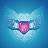 Pink heart,vector illustration Royalty Free Stock Photography