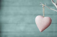 Pink Heart on White Tree with Turquoise Wood Plank Background Royalty Free Stock Photo
