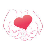 Pink heart in women contour hands Stock Images
