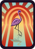 Pink_heron Royalty Free Stock Photo