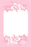 Pink hibiscus card. Vector illustration of pink hibiscus card Stock Photos