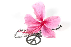 Pink Hibiscus Flower with Silver Peace Pendan. T as symbol of 1960s flower power Royalty Free Stock Photos