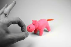 Pink hippo. Fun photo of a hand almost hitting a pink hippo Stock Images
