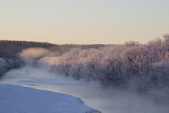 Pink Hoar Frost Covered Trees along Snowy River Stock Photos