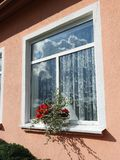 Pink home wall and windows. Pink  home wall and flowers , Lithuania Royalty Free Stock Photo