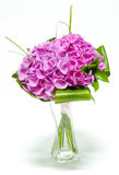 Pink Hortensia in a flower vase Royalty Free Stock Images