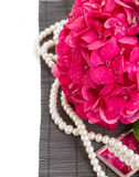 Pink hortensia flowers and pearls close up Royalty Free Stock Photo