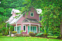 Pink house in forest. Beautiful pink house and big tree in forest Stock Photo