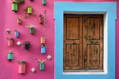 Pink house wall with flowerpots. Pink house wall decorated with a lot of flowers planted in cans Royalty Free Stock Image
