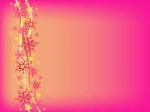 Pink hristmas background Stock Photos