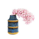 Pink hyacinth in blue vase, isolated over white Royalty Free Stock Photo