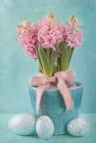 Pink hyacinths Stock Image