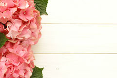 Pink  hydrangea flowers  on wooden table Stock Photography