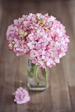 Pink hydrangea flowers Royalty Free Stock Photo