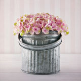 Pink hydrangea flowers in a metal bucket Stock Photos