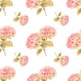 Pink hydrangea illustration seamless patten Royalty Free Stock Image