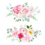 Pink hydrangea, red rose, white peony, camellia, ranunculus, euc. Alyptus and greenery vector design horizontal bouquets.Spring wedding flowers. Floral banner Stock Illustration