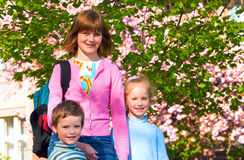 Pink  japanese cherry blossom and happy family Royalty Free Stock Photo