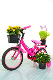 Pink Kid Bicycle. Stock Photo