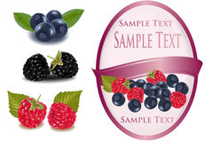 Pink label with blueberries and raspberries with Stock Image