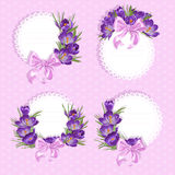 Pink labels with purple crocus Royalty Free Stock Image