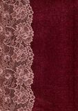 Pink lace. Stock Photography