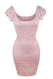 Pink lace dress Stock Images